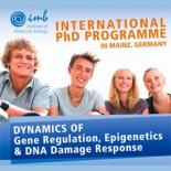 Гранты (стипендии) для участия в международной PhD-программе в Германии